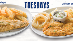 Find Takeaways || John Dory's Tuesday Deals